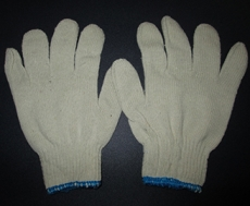 Knitted Glove (Blue Edge)